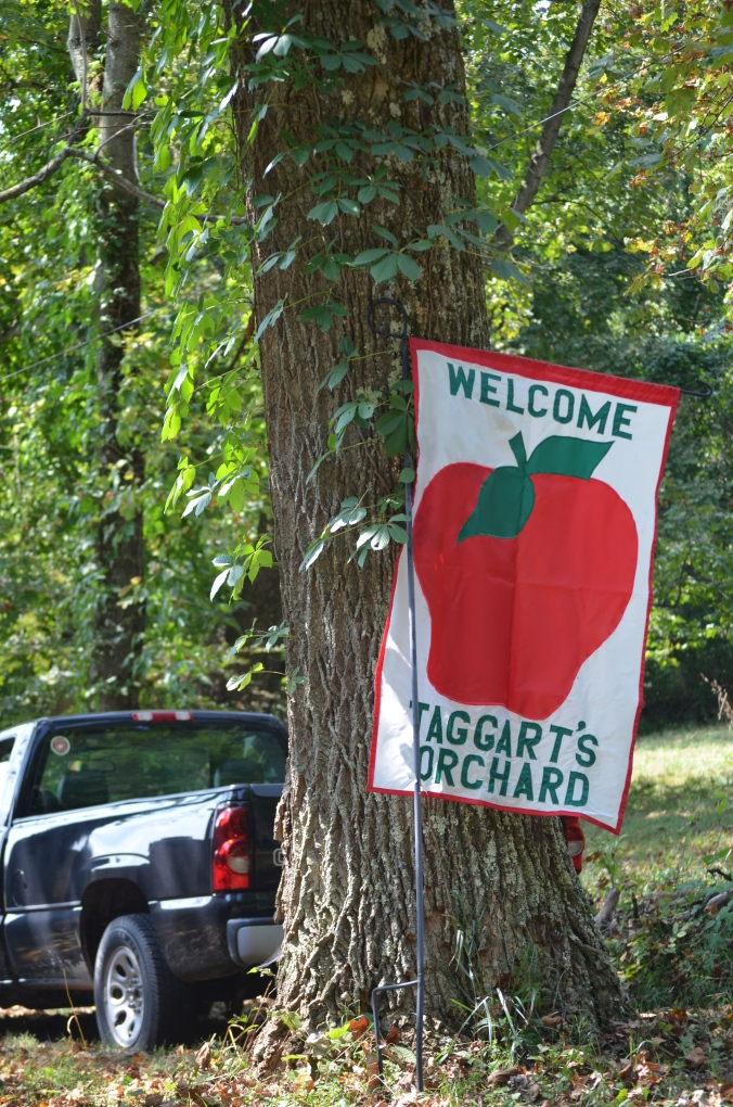 2015 | welcome to the orchard